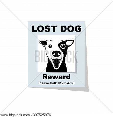Lost Dog. Reward For The Find. Missing Poster. Lost Puppy Poster. Sheet With The Announcement Of Dis