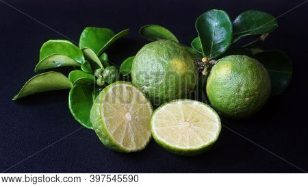 Kaffir Lime Or Citrus Hystrix. Some Are Whole, Some Have Been Sliced. Focus Selected, Black Backgrou