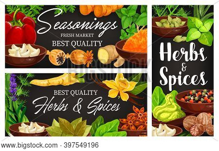 Food And Herb Vector Banners With Cartoon Condiments And Seasonings. Thyme, Basil, Oregano And Mint