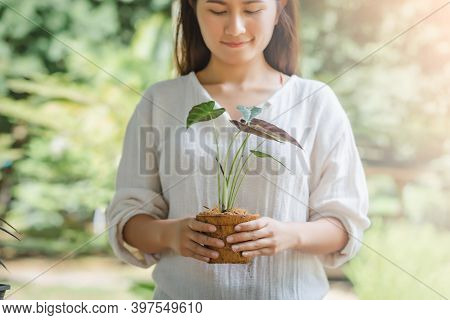 Asian Woman Holding A Tree Planted In A Coconut Fiber Pot, Hobbies And Leisure, Home Gardening, Cult