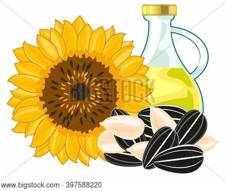 Plant Sunflower With Seeds And Sunflower Butter