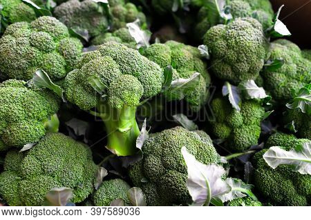 The Background Of Lots Of Fresh Broccoli.