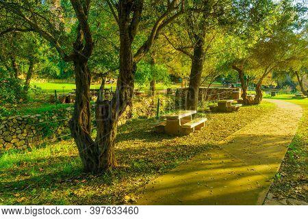 En Hemed, Israel - November 30, 2020: View Of A Picnic Area With Trees, Fall Foliage, The Kesalon St