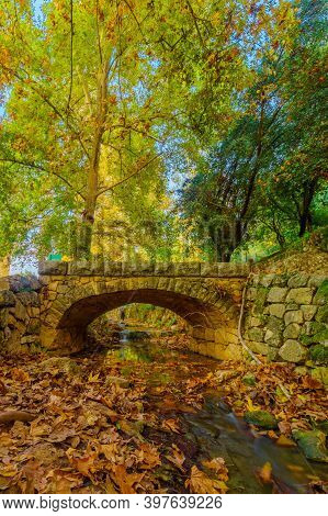 View Of The Kesalon Stream With A Stone Bridge, Trees, And Fall Foliage, In En Hemed National Park (