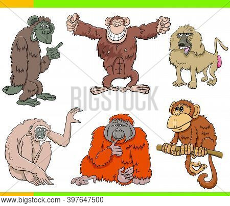 Cartoon Illustration Of Apes And Monkeys Primate Animal Characters Set