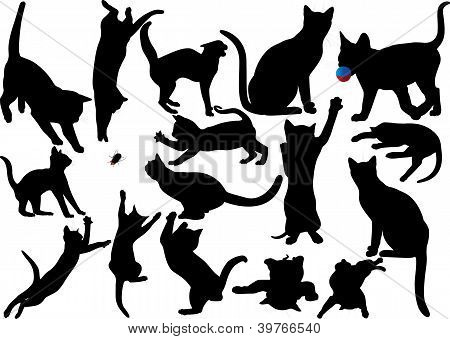 Cat and kitten (with moustaches) vector silhouette set.
