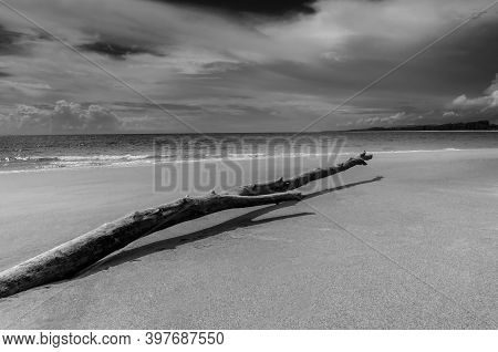 Beach Sand And Blue Sea Beautiful Landscape Nature In Blue Sky, Black And White And Monochrome Style