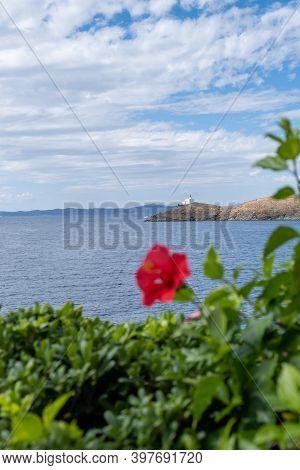 Blur Red Hibiscus, Rose Mallow Flower. Vertical View Of Kea, Tzia Island Greece, Space.