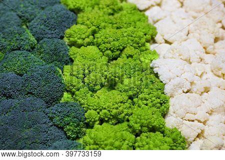 Set Of Broccoli, Cauliflower And Roman Cauliflower. Zero Waste And Vegan Concept. Fresh Cabbage Back