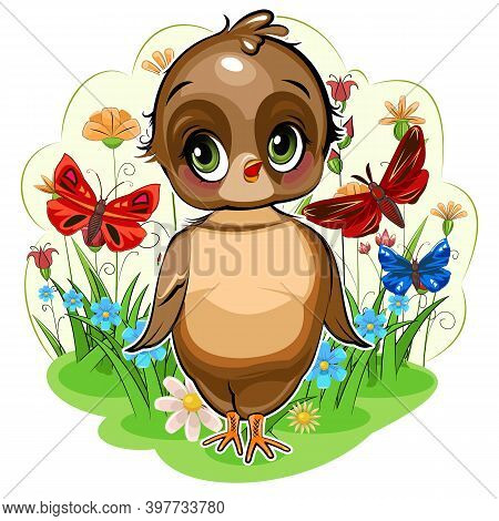 Sparrow Girl. Funny Chick. Cute And Funny Baby Bird. The Isolated Object On A White Background. Illu