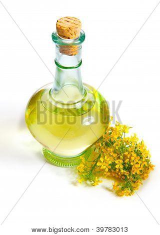 Fresh Rapeseed Oil In A Bottle