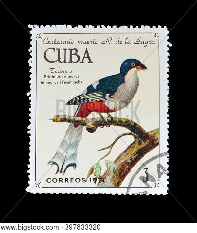 Cuba - Circa 1971 : Cancelled Postage Stamp Printed By Cuba, That Shows Cuban Trogon (priotelus Temn