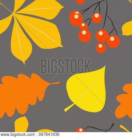 Yellow Leaves Of Chestnut And Red Rowan Berries On A Gray Background. Seamless Pattern With The Symb
