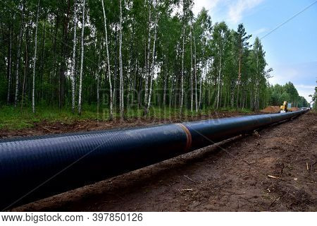 Crude Oil And Natural Gas Pipeline Construction Work In Forest Area. Petrochemical Pipe On Top Of Wo