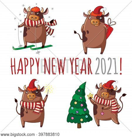 Cute Cartoon Bulls Decorate The Christmas Tree With Christmas Balls, Ski, Give Gifts, Light A Sparkl