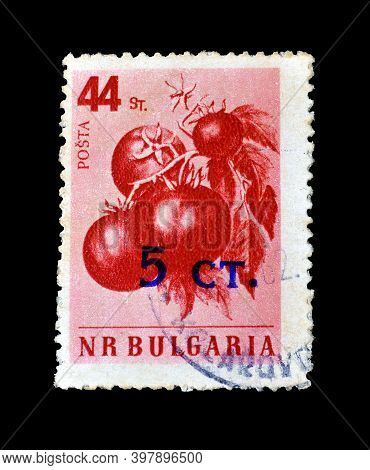 Bulgaria - Circa 1958 : Cancelled Postage Stamp Printed By Bulgaria, That Shows Tomatoes, Circa 1958