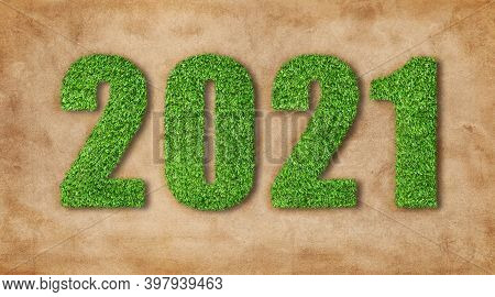 2021 New Years Concept : Artificial Grass In 2021 Wording Text Growth On Brown Ground.