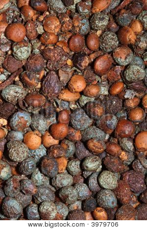 Pepper Seed Spice Texture