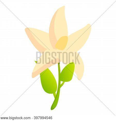 Bergamot Flower Icon. Cartoon Of Bergamot Flower Vector Icon For Web Design Isolated On White Backgr