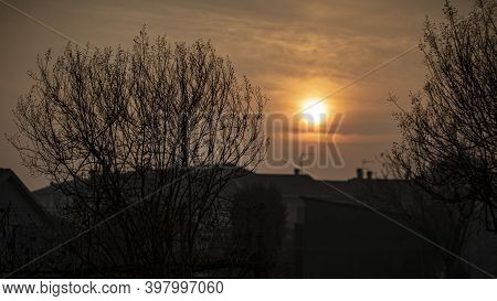 Sunset In Winter With Tree With Bare Branches