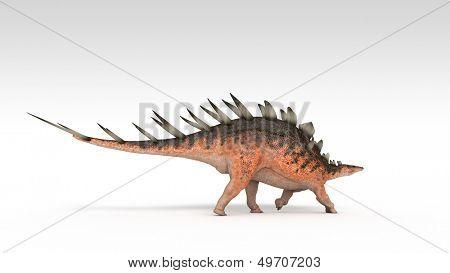 kentrosaurus isolated