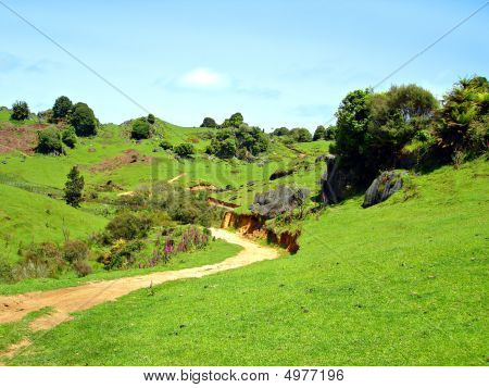 Dirt Farm Track through Rocky Green Hills Waitomo New Zealand poster