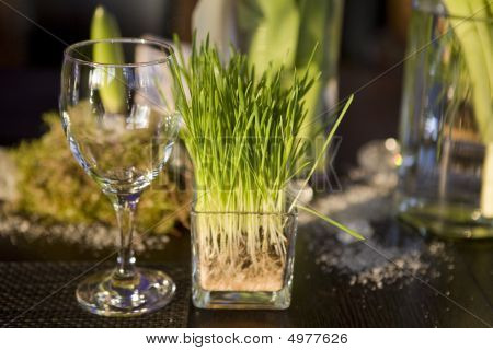 Grass In Vase Of Glasses And Glass On Table. Decoration Of Dining Table.