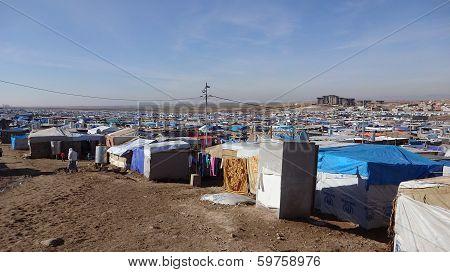 Domeez Camp