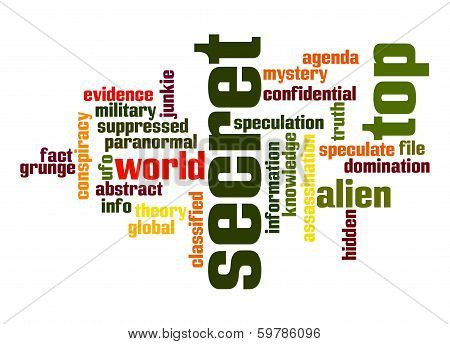 Top Secret Word Cloud