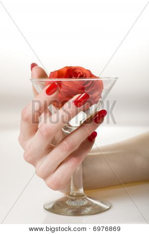 Beautiful Hand With Perfect Red Manicure Holding Martini Glass With Red Rose Inside. Youth And Beaut