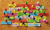Thank You Word on colorful paper different languages pinned on cork board poster