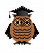 wise owl with glasses and a graduate hat on a white background poster