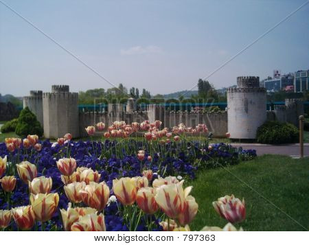 Fortress Miniature (tulips in front)