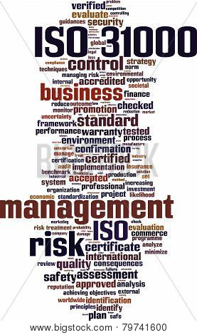 Iso 31000 Word Cloud