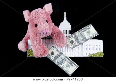 Pork Barrel Spending In Congress
