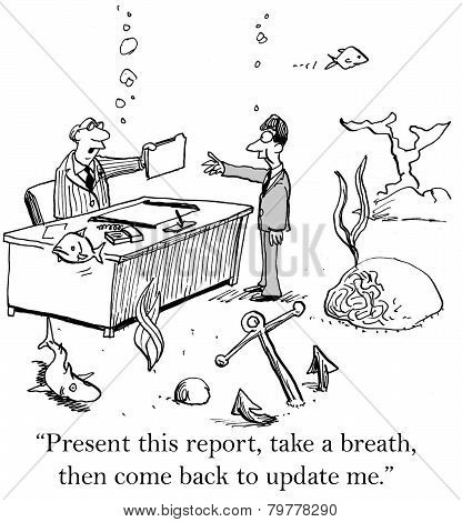 Present Report