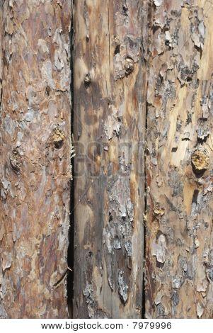 log fence close up shot for background
