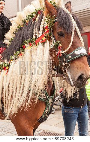Traunstein/Deutschland/Bavaria - 06th of April: decorated horse by the Georgi's ride in Traunstein