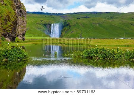 Striking reflection. Abounding waterfall Skogafoss reflected in a small pond. In the middle of the pond picturesque flower beds
