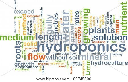 Background text pattern concept wordcloud illustration of hydroponics
