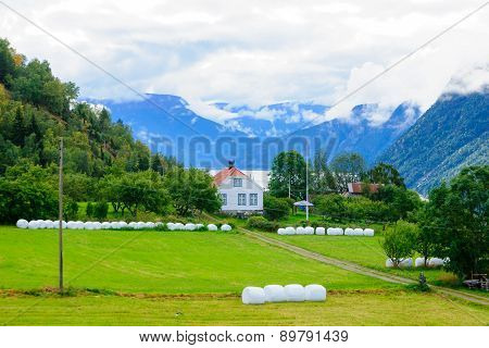 Typical Norwegian green countryside in Ornes Norway poster