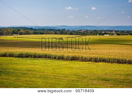 Bright Autumn Fields at Gettysburg
