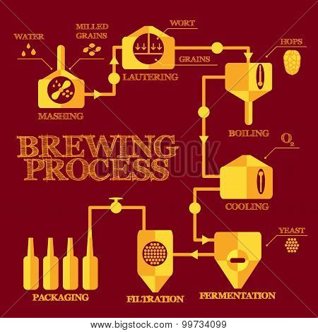 Brewery process infographics