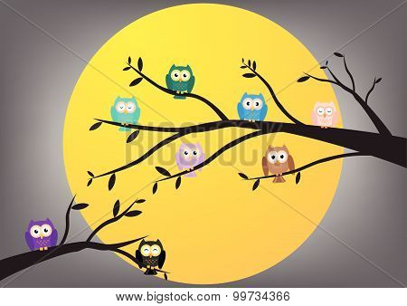 Owls on tree in night with full moon background. Vactor illustration