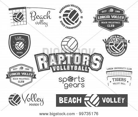 Volleyball labels, badges, logo and icons set. Sports insignias. Best for volley club, sport shops,