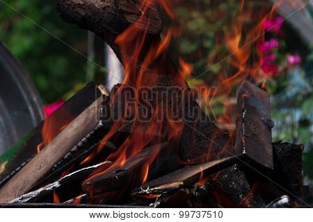 The Fire Quickly Covers The Logs On The Fire