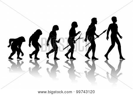 Man evolution