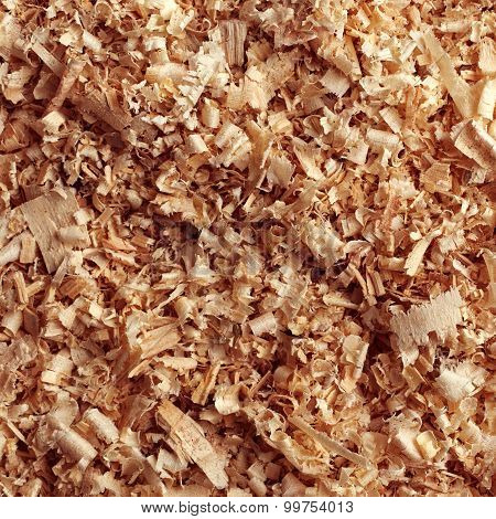 Texture of the wood sawdust. Abstract background poster