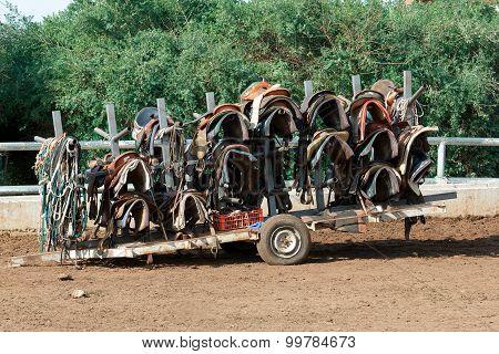 Cart With Saddles