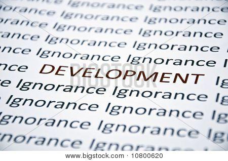 Development Word